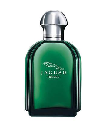 Jaguar Green Edt 100ML-Men