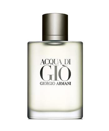Giorgio Armani Acqua Di Gio Edt 100ML-Men
